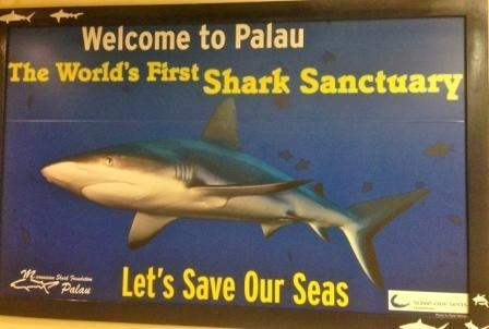 This is one of the first signs visitors see in the Palau airport, informing tourists of Palau's significant contributions to shark conservation. Photo by the author