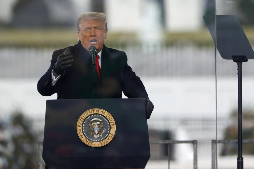"President Donald Trump speaks at the ""Stop The Steal"" Rally on January 06, 2021 in Washington, DC. (Tasos Katopodis/Getty Images)"