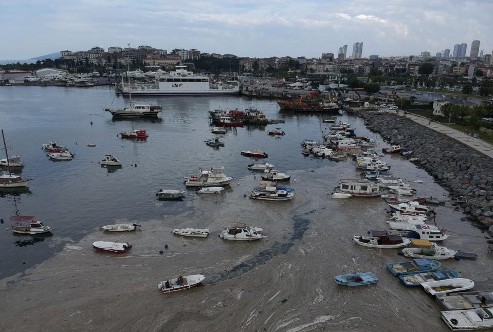 """An aerial photo of Pendik port in Asian side of Istanbul, Friday, June 4, 2021, with a huge mass of marine mucilage, a thick, slimy substance made up of compounds released by marine organisms, in Turkey's Marmara Sea. Turkey's President Recep Tayyip Erdogan promised Saturday to rescue the Marmara Sea from an outbreak of """"sea snot"""" that is alarming marine biologists and environmentalists. Erdogan said untreated waste dumped into the Marmara Sea and climate change had caused the sea snot bloom. Istanbul, Turkey's largest city with some 16 million residents, factories and industrial hubs, borders the sea.(AP Photo)"""