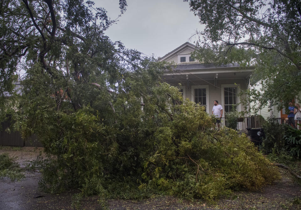 People look at a downed part of a tree after Hurricane Zeta made landfall, Wednesday, Oct. 28, 2020, in New Orleans. (Chris Granger/The Times-Picayune/The New Orleans Advocate via AP)