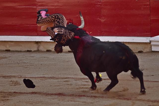 <p>A 'Banderillo' assistant bullfighter is gored by a bull from the Puerto de San Lorenzo ranch during a bullfight at the San Fermin Fiestas in Pamplona, Spain, July 9, 2017. (AP Photo/Alvaro Barrientos) </p>