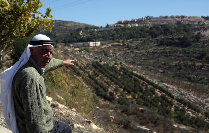 Olive farming and olive oil production bring in around a quarter of Palestinian agricultural revenue, according to UN officials (AFP Photo/Abbas Momani)