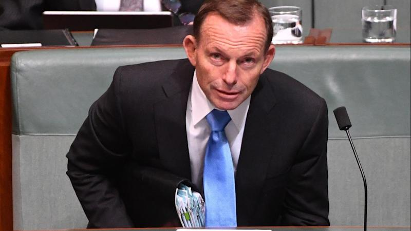 Tony Abbott's view on same sex marriage appears out of step with his Warringah electorate.