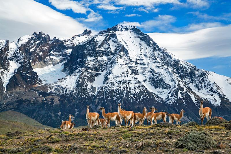 Chilean Patagonia - This content is subject to copyright.