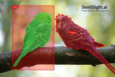 SentiSight.ai is a web-based platform that can be used for image labeling and for developing AI-based image recognition applications. The new version of SentiSight.ai includes powerful features, such as object detection model training, offline models and an improved image labeling tool.