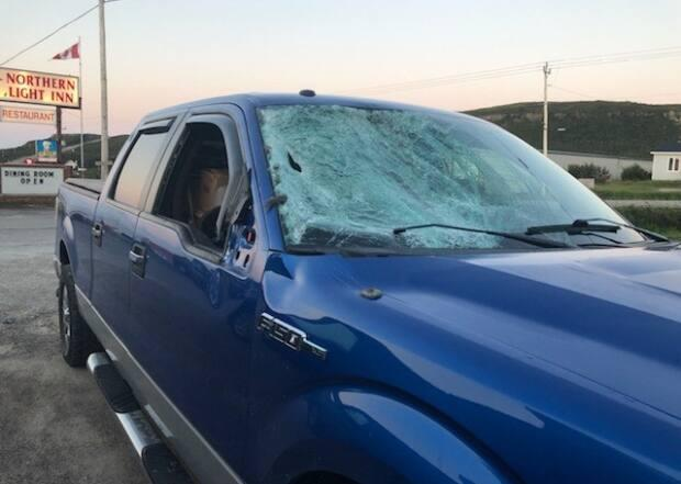 Nancy Hall hit a moose on the Trans-Labrador Highway, and the help of a kind citizen got her the rest of the way to Deer Lake.  (Submitted by Nancy Hall - image credit)