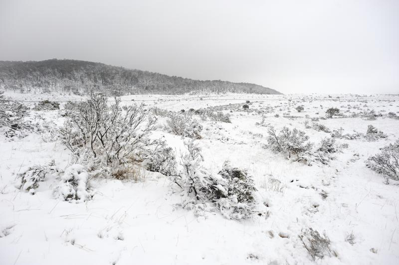 Snow at the Kosciuszko National Park in NSW where more is expected to fall this week. source: AAP
