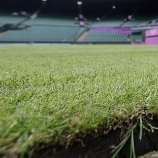 Grass is seen at Centre Court at the All England Lawn Tennis Club at Wimbledon, London Friday, July 27, 2012. On Saturday, lawn tennis will be played in the Olympics for the first time since 1920. The Games will be staged at the All England Club only three weeks after Wimbledon ended, which gave groundskeepers precious little time to repair damage to the courts. (AP Photo/Elise Amendola)