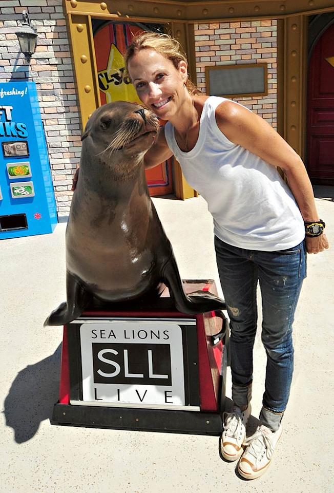 "Songstress Sheryl Crow found a very cute duet partner -- Clyde the sea lion -- at Sea World in San Diego on Wednesday. The little guy is used the spotlight since he's the star of his very own show at the park called ""Sea Lion Tonite."" Sheryl is in the SoCal city as part of her summer concert tour with Kid Rock. Michael Aguilera/<a href=""http://www.pacificcoastnews.com/"" target=""new"">PacificCoastNews.com</a> - August 3, 2011"