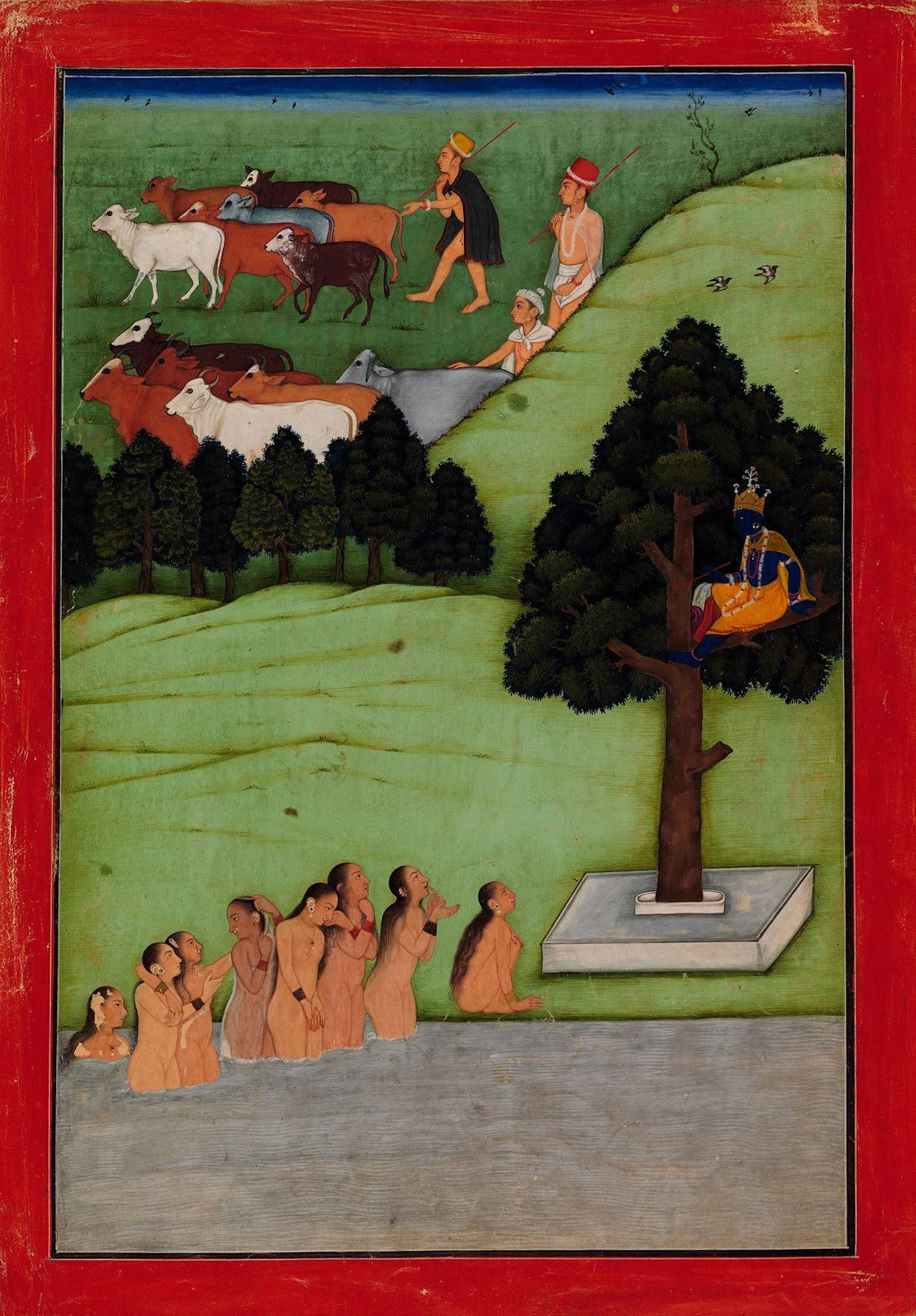 """""""Krishna Steals the Clothing of the Gopis (CowMaidens).""""Attributed to the artist known as the Early Master atthe Court of Mandi.Probably an illustrated folio from a dispersedBhagavata Purana (The Ancient Story of God)Punjab Hills, kingdom of Mandi, ca. 1640.Opaque watercolor and gold on paper; red border withwhite and black inner rules; painting 11 7/8 x 8 in.Promised Gift of the Kronos Collections, 2015."""