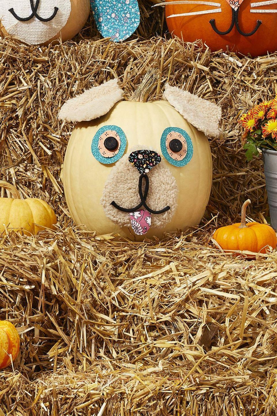 """<p>Does this sweet pooch really need an explanation? He's simply got to be part of your fall décor this year. Use pieces of fake sherpa fur for the ears and nose, and floral fabric for the rest of the pup. Black cotton cord or black yarn creates the mouth shape.</p><p><a class=""""link rapid-noclick-resp"""" href=""""https://go.redirectingat.com?id=74968X1596630&url=https%3A%2F%2Fwww.walmart.com%2Fsearch%2F%3Fquery%3Dfloral%2Bfabric&sref=https%3A%2F%2Fwww.thepioneerwoman.com%2Fhome-lifestyle%2Fdecorating-ideas%2Fg36664123%2Fwhite-pumpkin-decor-ideas%2F"""" rel=""""nofollow noopener"""" target=""""_blank"""" data-ylk=""""slk:SHOP FLORAL FABRIC"""">SHOP FLORAL FABRIC</a></p>"""