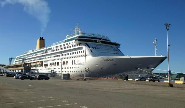 The federal government has banned cruise shipscarrying 100 or more people from operating in Canadian watersuntil Feb. 28, 2022. (Matthew Bingley/CBC News file photo - image credit)