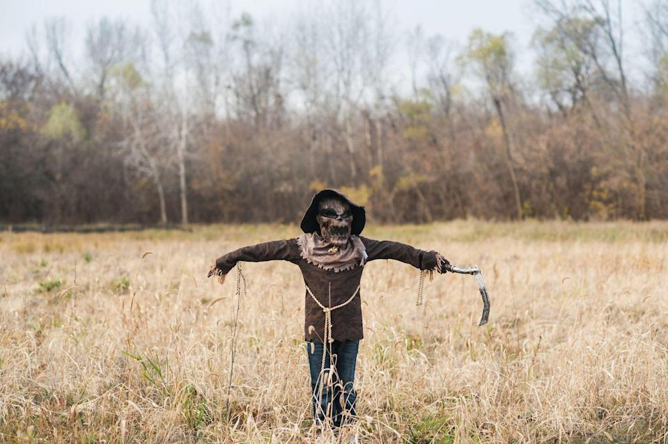 "<p>Not all scarecrows are storybook-friendly. This masked costume, complete with a play axe, takes a cue from the holiday's creep factor. </p><p><a class=""link rapid-noclick-resp"" href=""https://www.amazon.com/Hophen-Halloween-Terror-Biochemical-Zombie/dp/B074V7MGKJ/?tag=syn-yahoo-20&ascsubtag=%5Bartid%7C10055.g.33397158%5Bsrc%7Cyahoo-us"" rel=""nofollow noopener"" target=""_blank"" data-ylk=""slk:SHOP SCARY SCARECROW MASK"">SHOP SCARY SCARECROW MASK</a></p>"