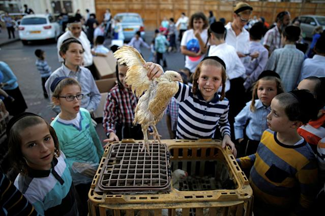 <p>An ultra-Orthodox Jewish boy holds a chicken at the area where people perform the Kaparot ritual, where white chickens are slaughtered as a symbolic gesture of atonement, ahead of Yom Kippur, the Jewish Day of Atonement, in Ashdod, Israel, Sept. 27, 2017. (Photo: Amir Cohen/Reuters) </p>