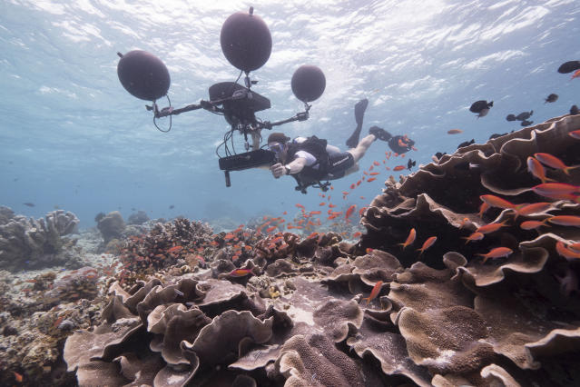 Scientist Steve Simpson uses a multidirectional hydrophone to record the sounds of the reef. Scientists have recently discovered that many fish on the coral reef rely on sound at key stages in their life — and that manmade noise is interfering with this. (Photo: Roger Munns/BBC)