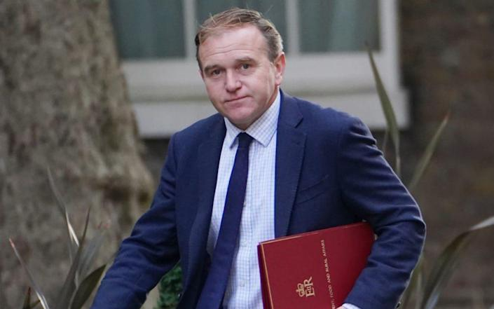 Environment Secretary George Eustice arriving in Downing Street - PA