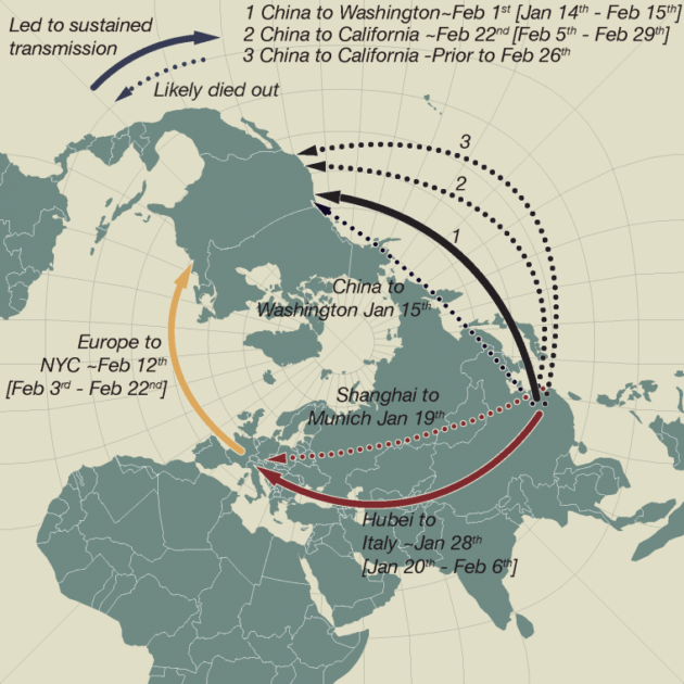 """This schematic map shows early and apparently """"dead-end"""" introductions of SARS-CoV-2 to Europe and the U.S. (dashed arrows). Successful dispersals between late January and mid-February are shown with solid arrows: from Hubei Province, China, to Northern Italy; from China to Washington state; and later, from Europe (as the Italian outbreak spread more widely) to New York City and from China to California. (Credit: Andrew Rambaut / University of Edinburgh and Jeffrey Joy / University of British Columbia)"""