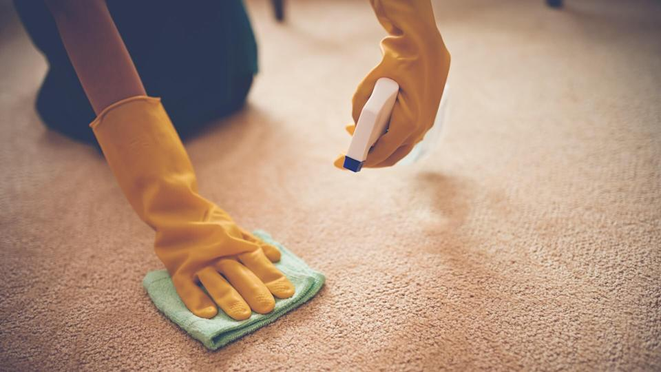 Close-up image of woman removing stain from the carpet.
