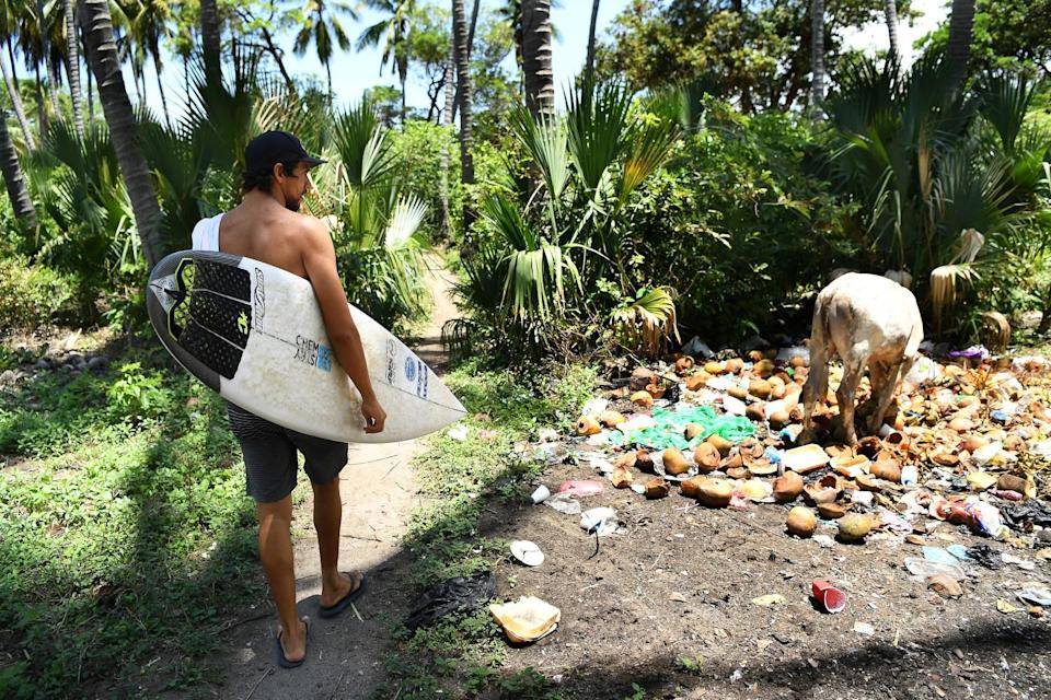Surfer Bryan Perez walks past a cow foraging in trash