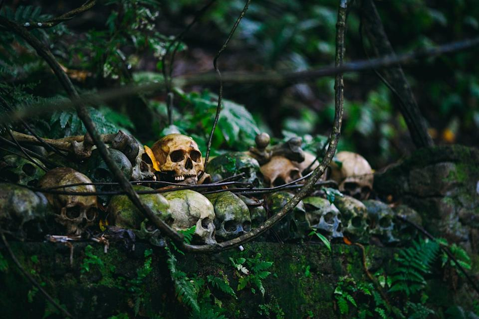 <p>To start this spooky hunt, divide your guests into small teams, and provide each with a clue that will essentially get them closer to the hidden treasure. For a more challenging hunt, include a Halloween-themed puzzle or riddle that needs to be solved in each clue. Don't be afraid to plant both tricks and treats along the way. This will keep the thrills alive! If you're having a hard time coming up with the final treasure, remember you can't go wrong with an ice-cold bucket bubbling over with Champagne!</p> <p><strong>How to do it while social distancing:</strong> This game is best to play with people who live close to you. Make sure each person wears a mask and socially distances, and you'll be good to go. Set up the treasure hunt outside for best results.</p>