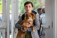 """<p>This show offers an honest look at how social anxiety effects tweens. It follows 11-year-old Noah Ferris as he starts middle school with the help of his adorable emotional support dog, Dude.<br></p><p><a class=""""link rapid-noclick-resp"""" href=""""https://www.netflix.com/title/80239306"""" rel=""""nofollow noopener"""" target=""""_blank"""" data-ylk=""""slk:WATCH NOW"""">WATCH NOW</a></p>"""