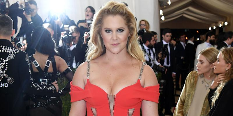 ceeed2901 10 Most Surprising Reveals From Amy Schumer's New Memoir