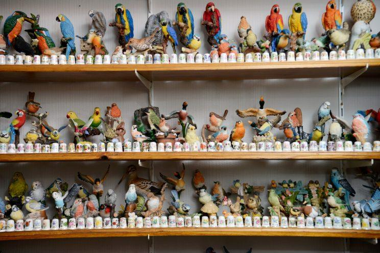 A keen collector dubbed the 'Ornimator' has had to resort to cooking and doing his washing at his parents house because his own home is full of ornaments.