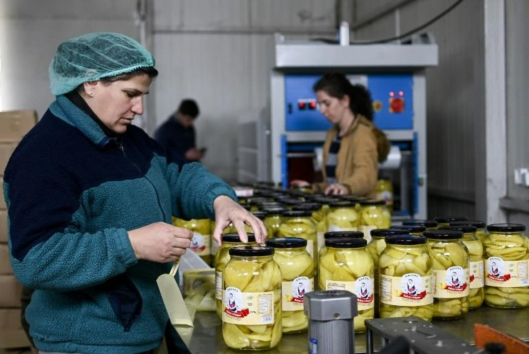 Pickling and processing vegetables at the Koperativa Krusha helps keep dozens of Kosovar widows employed