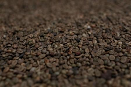 Asia Coffee: Low supply keeps trade subdued in Vietnam