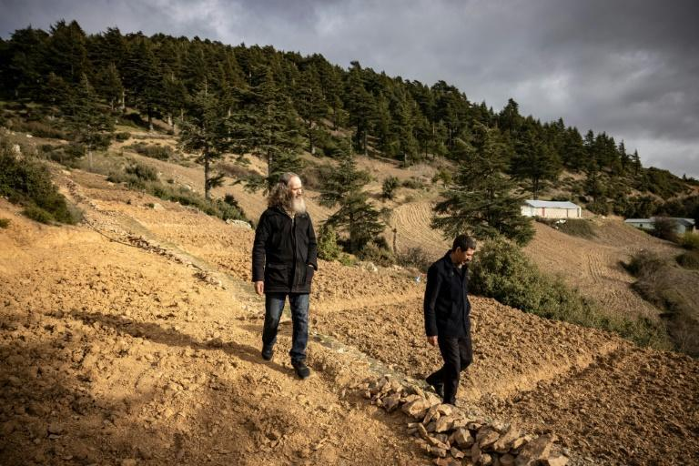 Moroccan farmers stand by a cannabis field at the foot of the mountainous Rif region, awaiting the drug's legalisation for medicinal use