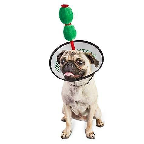 """<p>Cone of shame, straight up.</p><br><br><strong>Bootique</strong> Dirty Puptini Dog Costume, $6.99, available at <a href=""""https://www.petco.com/shop/en/petcostore/product/bootique-dirty-puptini-dog-costume"""" rel=""""nofollow noopener"""" target=""""_blank"""" data-ylk=""""slk:Petco"""" class=""""link rapid-noclick-resp"""">Petco</a>"""