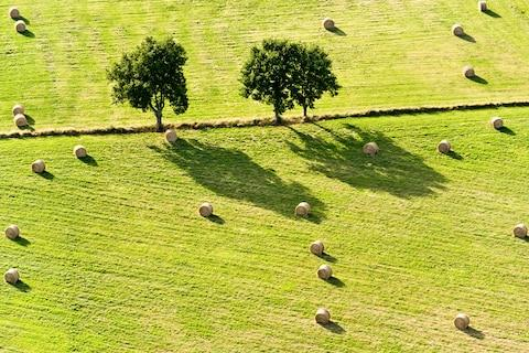 Find undulating farmland in the Vendée - Credit: GETTY