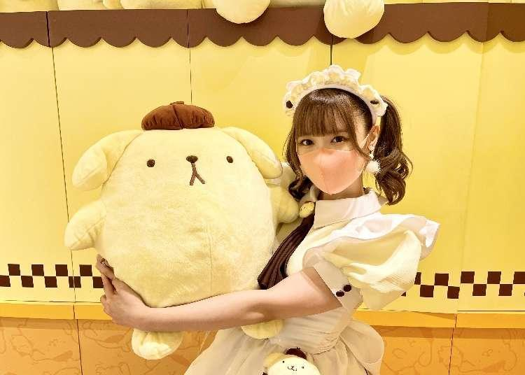 """Adorable Japanese Character """"Pompompurin"""" Gets a Maid Makeover in Harajuku: On-site Report"""