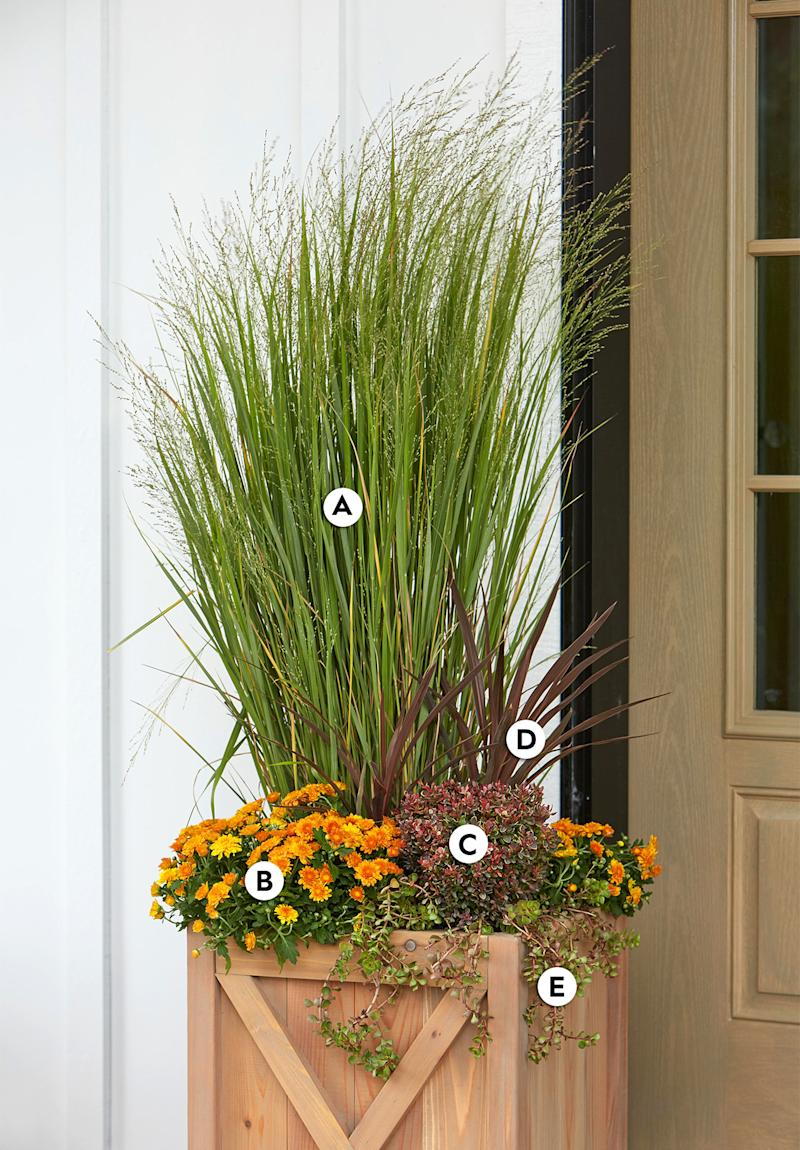 31 Gorgeous Fall Container Garden Ideas to Try Right Now