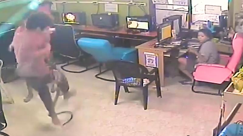 Man Runs for Life As Snake Chases Him Inside Cyber Cafe!