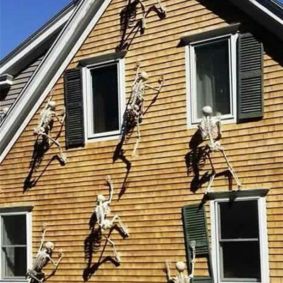 "<p>Wow, these <a href=""https://www.popsugar.com/buy/Glumes-Luminous-Horror-Hanging-Skeletons-486645?p_name=Glumes%20Luminous%20Horror%20Hanging%20Skeletons&retailer=amazon.com&pid=486645&price=9&evar1=savvy%3Auk&evar9=46570755&evar98=https%3A%2F%2Fwww.popsugar.com%2Fsmart-living%2Fphoto-gallery%2F46570755%2Fimage%2F46571022%2FGlumes-Luminous-Horror-Hanging-Skeletons&list1=shopping%2Camazon%2Challoween%2Challoween%20decor%2Coutdoor%20decorating&prop13=api&pdata=1"" rel=""nofollow"" data-shoppable-link=""1"" target=""_blank"" class=""ga-track"" data-ga-category=""Related"" data-ga-label=""https://www.amazon.com/Glumes-Halloween-Decoration-Luminous-Hanging/dp/B07HM8DGSJ/ref=sr_1_107?crid=277EDM53KFINB&amp;keywords=lawn%2Bhalloween%2Bdecorations&amp;qid=1567531280&amp;s=gateway&amp;sprefix=lawn%2Bhall%2Caps%2C184&amp;sr=8-107&amp;th=1"" data-ga-action=""In-Line Links"">Glumes Luminous Horror Hanging Skeletons</a> ($9) are pretty crazy.</p>"