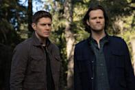 """<p>The 15th (and final) season of the record-setting paranormal drama was cut short due to the pandemic, but <em>Supernatural</em> fans don't fret. The series, which <a href=""""https://deadline.com/2019/03/supernatural-fans-and-industry-salute-its-record-run-in-online-tributes-1202581038/"""" rel=""""nofollow noopener"""" target=""""_blank"""" data-ylk=""""slk:holds the record"""" class=""""link rapid-noclick-resp"""">holds the record</a> as the longest-running sci-fi show in American television, will return for a final batch of episodes once it is safe for filming to resume. The series' star Jared Padalecki is <a href=""""https://tvline.com/2020/05/14/supernatural-final-episodes-premiere-date-airing-the-cw/"""" rel=""""nofollow noopener"""" target=""""_blank"""" data-ylk=""""slk:set to lead the reboot"""" class=""""link rapid-noclick-resp"""">set to lead the reboot</a> of <em>Walker, Texas Ranger </em>for CW in 2021.</p>"""