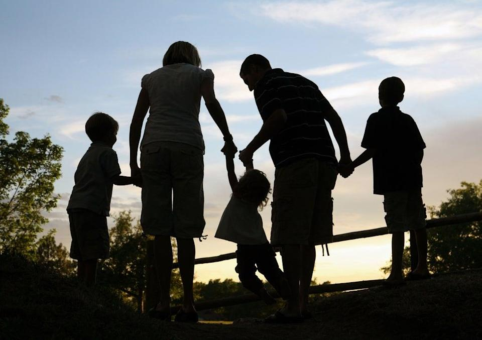 Modern families are often blended (Alamy/PA)