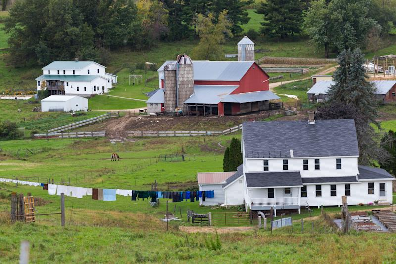 Amish farms are clustered together along Highway D between Cashton and La Farge.