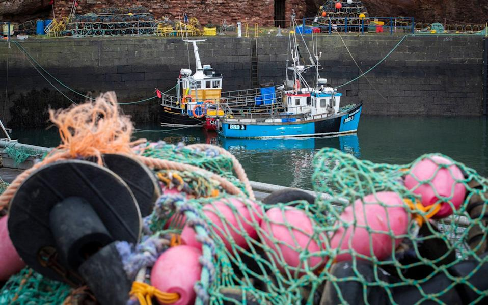 Exports of fresh fish and seafood have been severely disrupted by delays since the UK's transition period ended. - PA