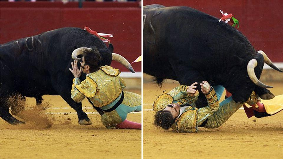 Juan Jose Padilla was gored by the horn of a 600-kilogram bull in Spain. Photo: AFP