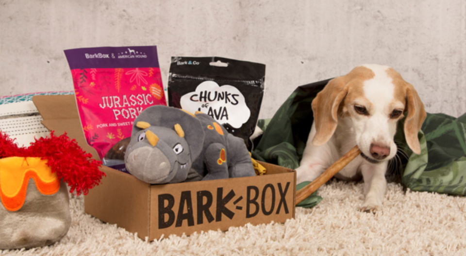 Mail for you, Fido!  (Photo: Barkbox)