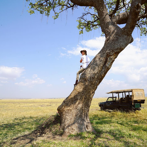 "<p>The <em>DWTS</em> star took her honeymoon with new hubby Brooks Laitch to new heights, as she climbed a tree and prepared to take on a safari in Kenya. ""Jambo Savannah, it's gonna be a great day!"" she wrote. (Photo:<a href=""https://www.instagram.com/p/BW-wG1ZBcvz/?taken-by=juleshough"" rel=""nofollow noopener"" target=""_blank"" data-ylk=""slk:Julianne Hough via Instagram"" class=""link rapid-noclick-resp""> Julianne Hough via Instagram</a>) </p>"