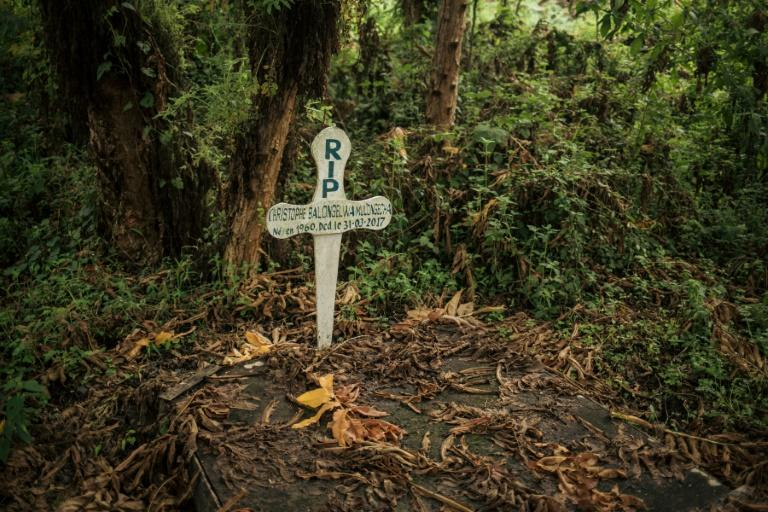 The grave of a ranger killed on duty (AFP Photo/ALEXIS HUGUET)