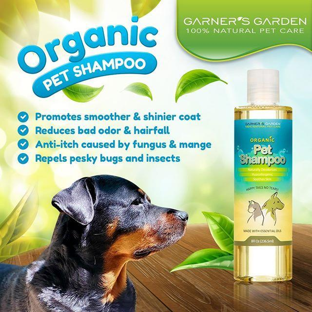 "<p>Itchy pets will appreciate this bug-repellent shampoo. And your nose will love the way it makes your dog or cat smell.</p><p><a class=""link rapid-noclick-resp"" href=""https://www.amazon.com/Garners-Garden-Naturally-Deodorizes-Hypoallergenic/dp/B07H14YFWK/ref=sr_1_4?dchild=1&qid=1594383270&sr=8-4&srs=13393885011&tag=syn-yahoo-20&ascsubtag=%5Bartid%7C10049.g.33891438%5Bsrc%7Cyahoo-us"" rel=""nofollow noopener"" target=""_blank"" data-ylk=""slk:Shop Now"">Shop Now</a><br><br></p><p><a href=""https://www.instagram.com/p/CEXeiJhhhsw/?utm_source=ig_embed&utm_campaign=loading"" rel=""nofollow noopener"" target=""_blank"" data-ylk=""slk:See the original post on Instagram"" class=""link rapid-noclick-resp"">See the original post on Instagram</a></p>"