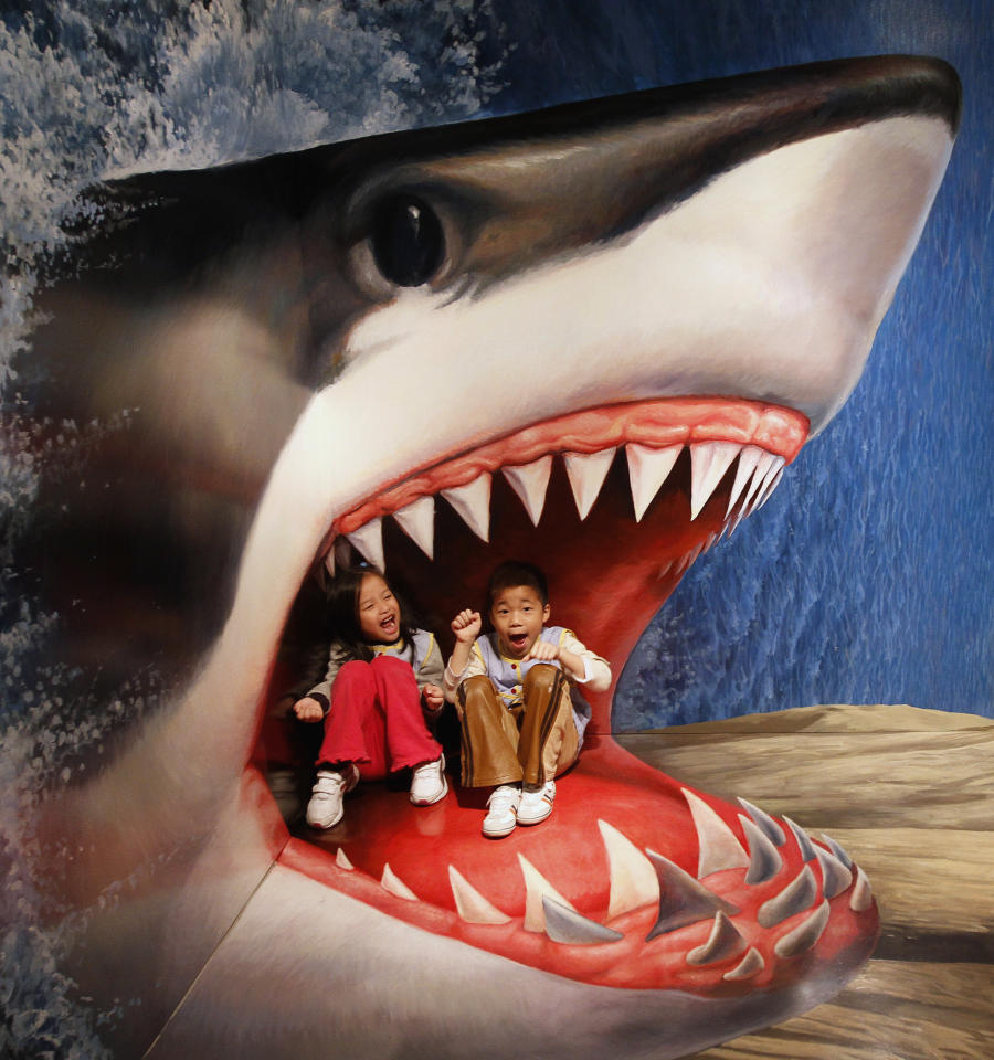 Children sit on a piece of 3D artwork featuring a shark as they pose for a photograph for their family during an exhibition by the Trick Art Museum of Japan at the National Taiwan Science Education Centre in Taipei March 2, 2012. The exhibition will be held in Taipei from March 3 to June 3, 2012. REUTERS/Shengfa Lin