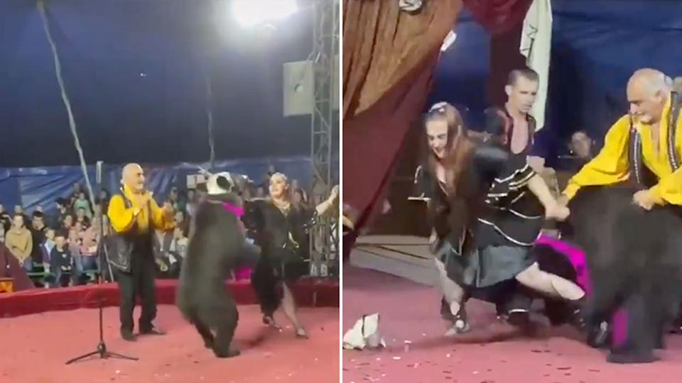A bear mauled a circus performer in front of a crowd in Russia. Source: Twitter/The Siberian Times