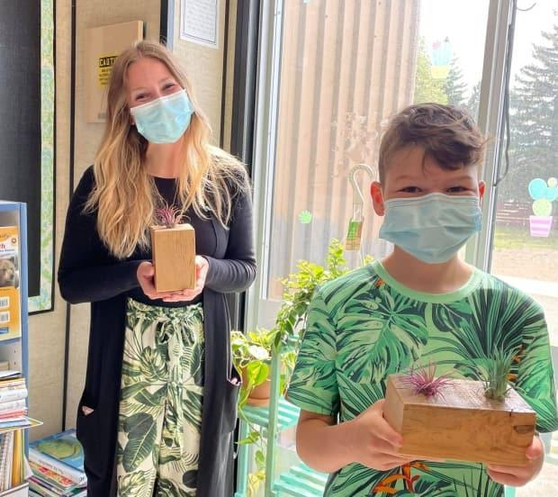 Grade 3/4 teacher Kelsey Gullickson brought plants into her classroom, something which sparked an interest in her students and a new passion for her student, Domenic LaHaye.  (Janani Whitfield photo - image credit)