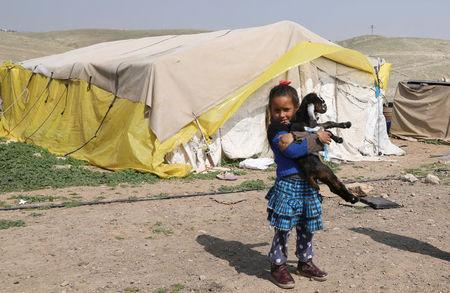 FILE PHOTO: Bedouin Palestinian girl carries a goat outside her family's dwelling in al-Khan al-Ahmar village near the West Bank city of Jericho