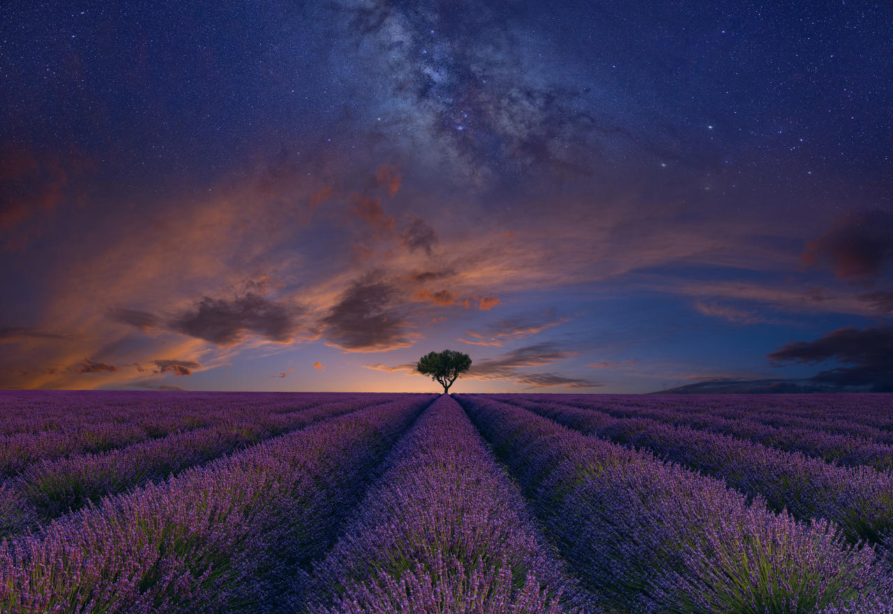 <p>Lavender fields in Valensole, France, in a stunning evening composition by US photographer Peter Lik (Peter Lik/ILPOTY) </p>